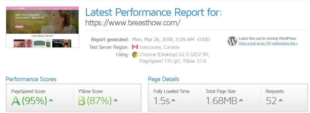 website is fast gtmetrix proof
